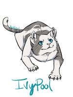 Ivypool of Thunderclan by azulJackal