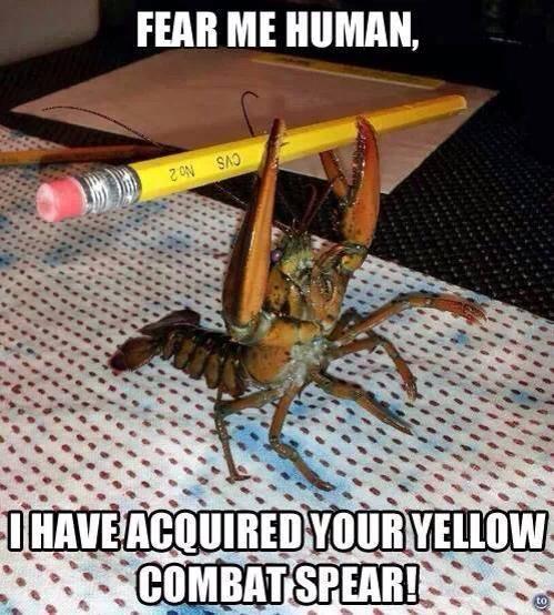 Random Lobster by WerewolfNightmare101