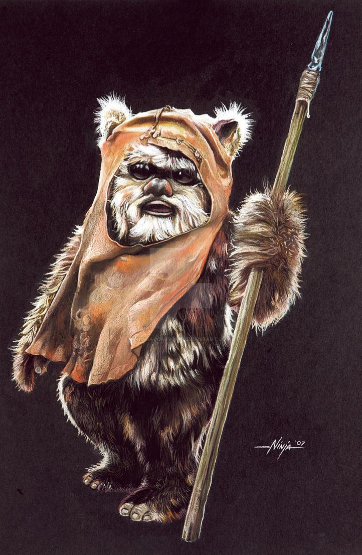 Ewok by ninjacompany on deviantart - Ewok wallpaper ...