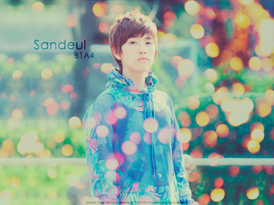 B1A4 Sandeul by psychasthenia-30