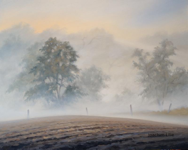 Morning fog by JoachimL