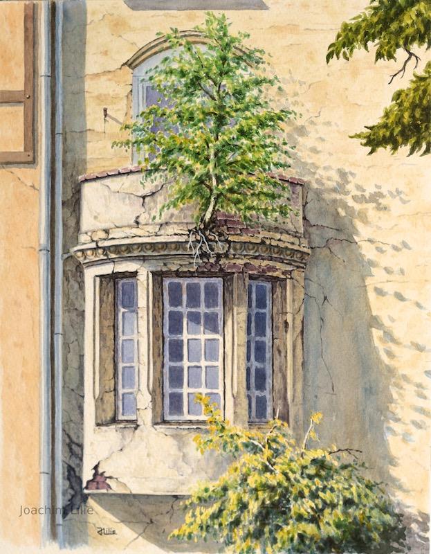 Die Balkonbirke by JoachimL