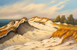 Dunes in autumn by JoachimL