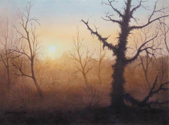 Morning sun by JoachimL