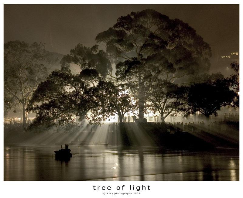 tree of light by l32