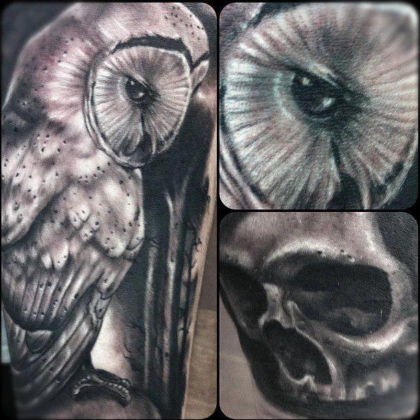 Owl by Da-wizard