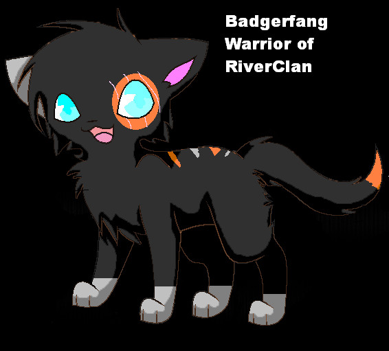 Any one want me to draw their cat? - Page 2 Badgerfang_the_warrior_by_pokefreak489-d4a3kk6
