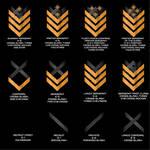 Threshold Guard Enlisted Ranks