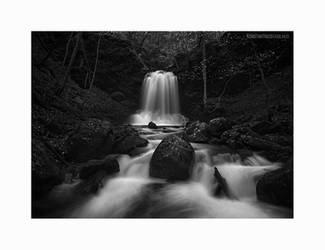 Enchanted by KirlianCamera