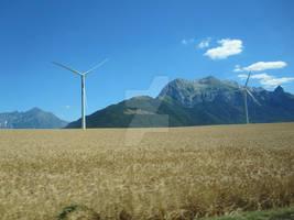 The Southern Alps VI