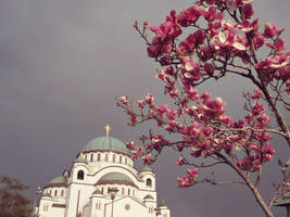 Cathedral in the spring
