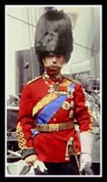 Colonel-in-Chief