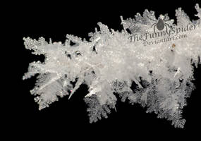 Pretty  Ice Crystals by TheFunnySpider