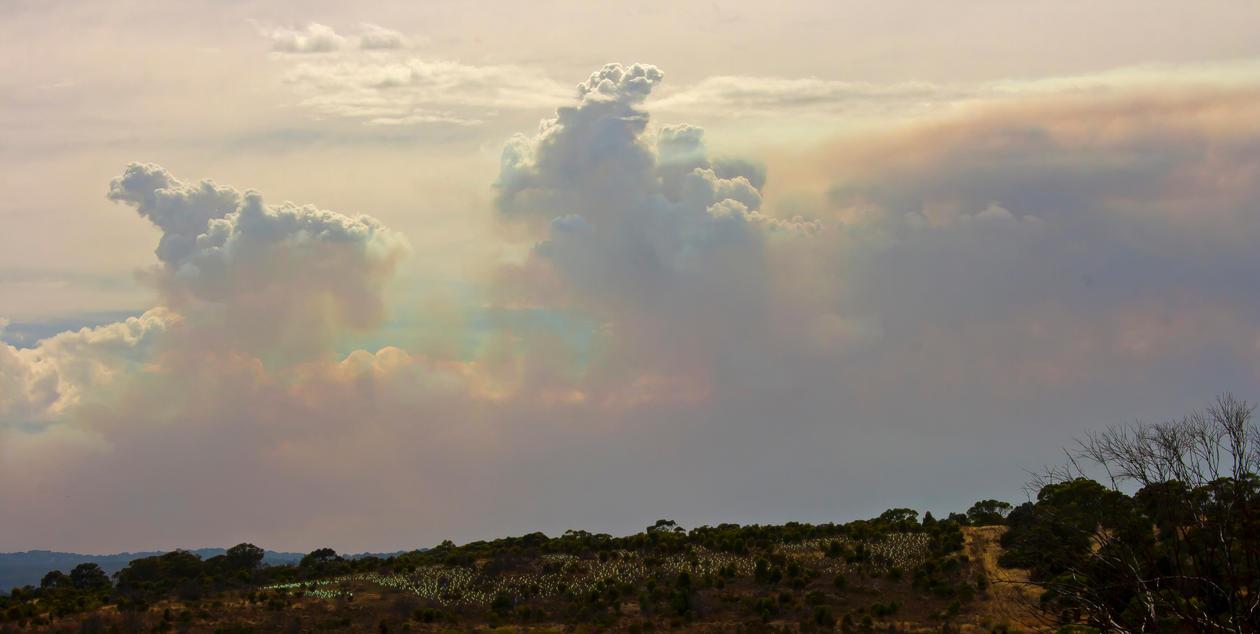 Sky Battles by RadishStick