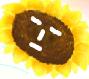 garaku24's Profile Picture