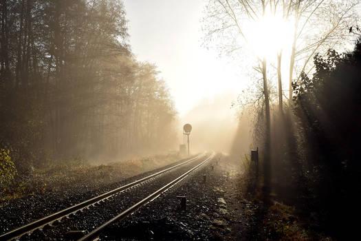 3373 Between mist and sun