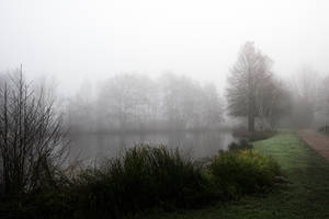 3447 Fog at the pond by RealMantis
