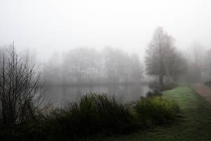 3447 Fog on the pond by RealMantis
