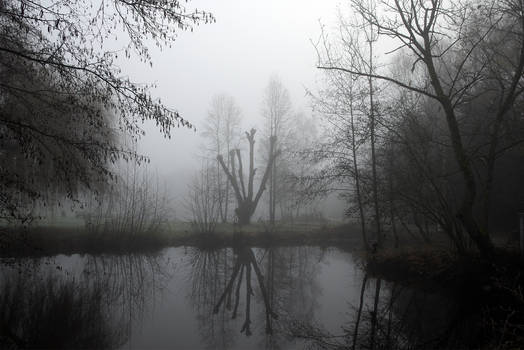 3448 Moody nature
