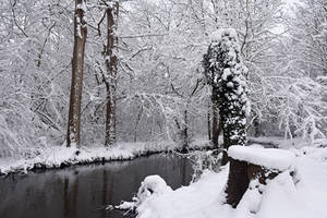 4602 Snowscape #4 by RealMantis