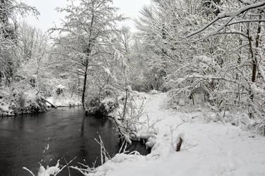 4613 Snowscape by RealMantis