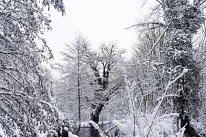 4645 Snowscape by RealMantis