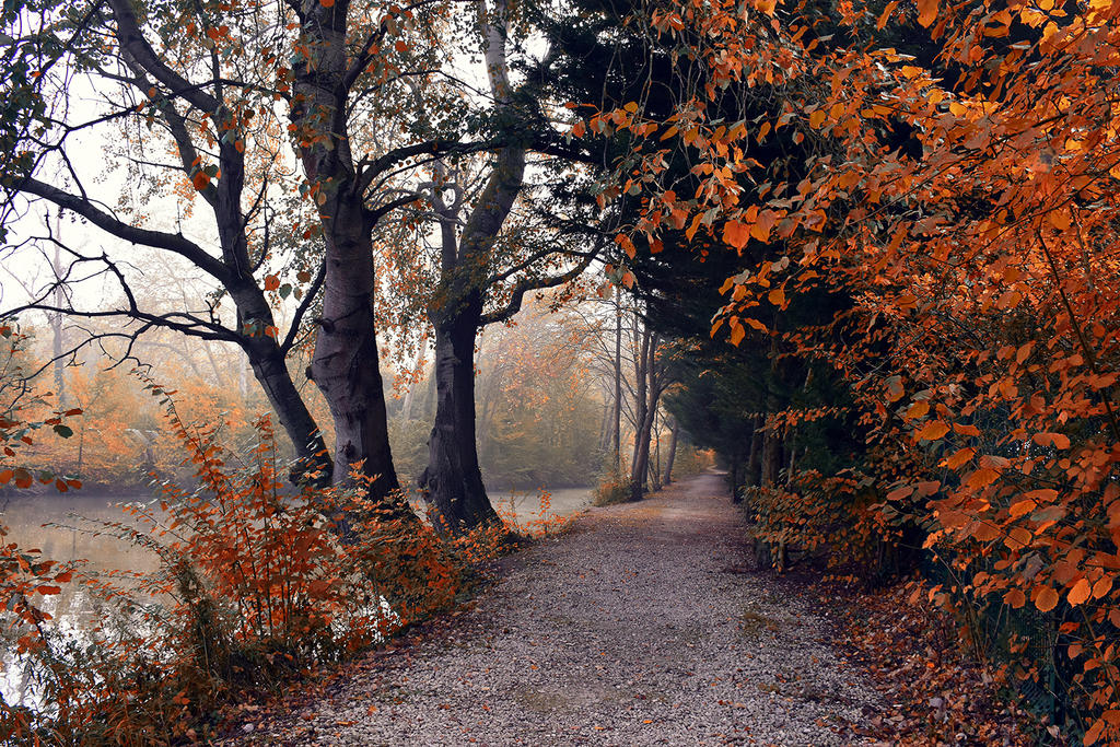 0905 Colors of Autumn III by RealMantis
