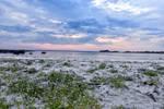 1513 Arctic beach