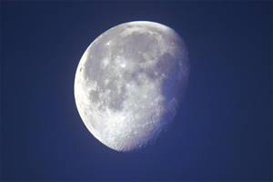 3466 Moon by RealMantis