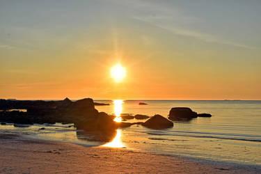 1385 Midnight sun by RealMantis
