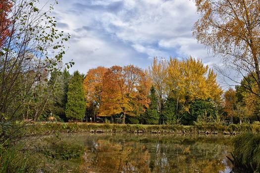 1749 Colors of autumn XV