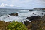 0048 Wild coast