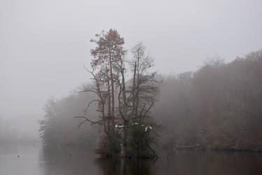 4178 The island in the mist