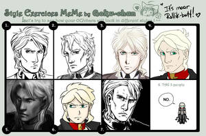 Style Exercise Meme by Del-Borovic