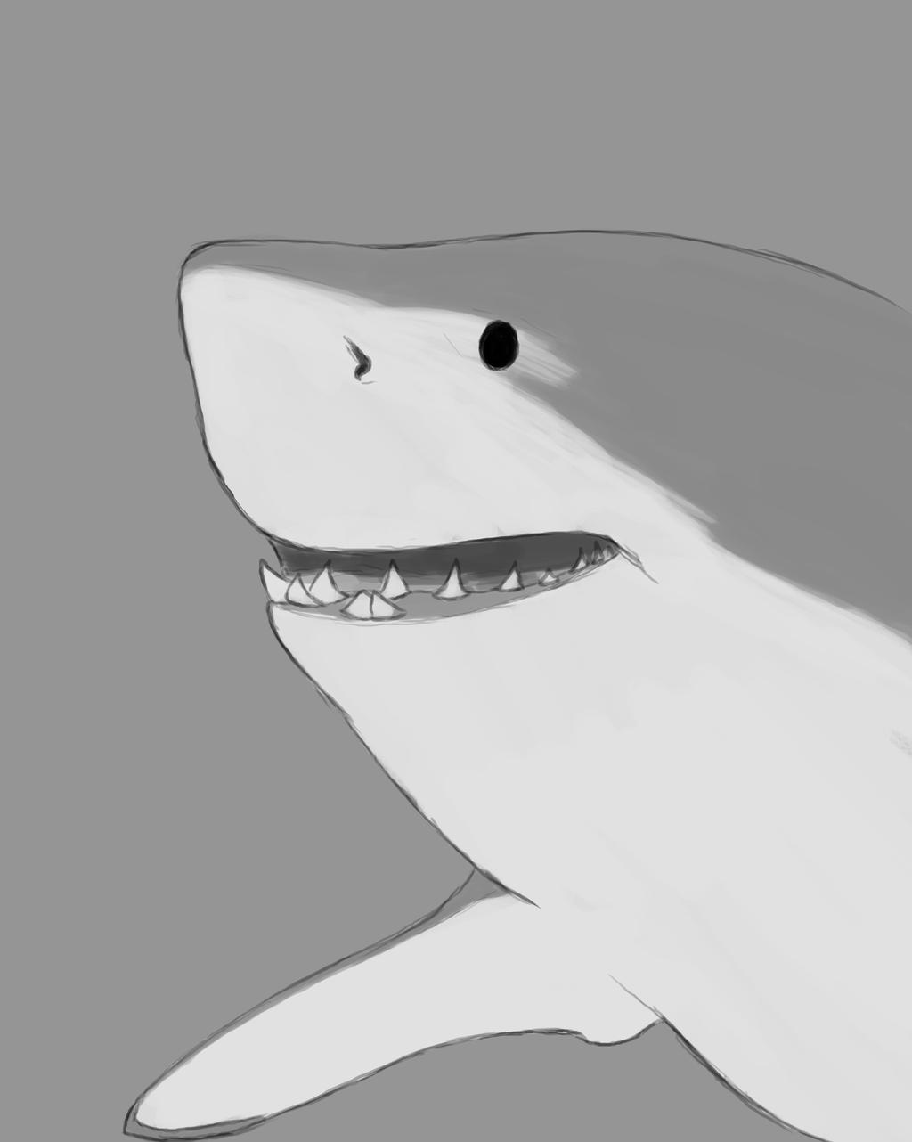 Shark Daily sketch #663 by GothicVampireFreak