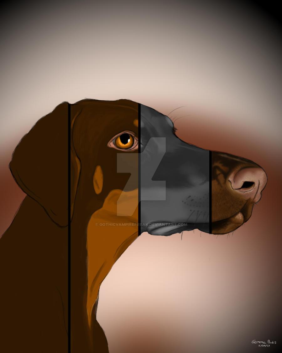 Doggo by GothicVampireFreak