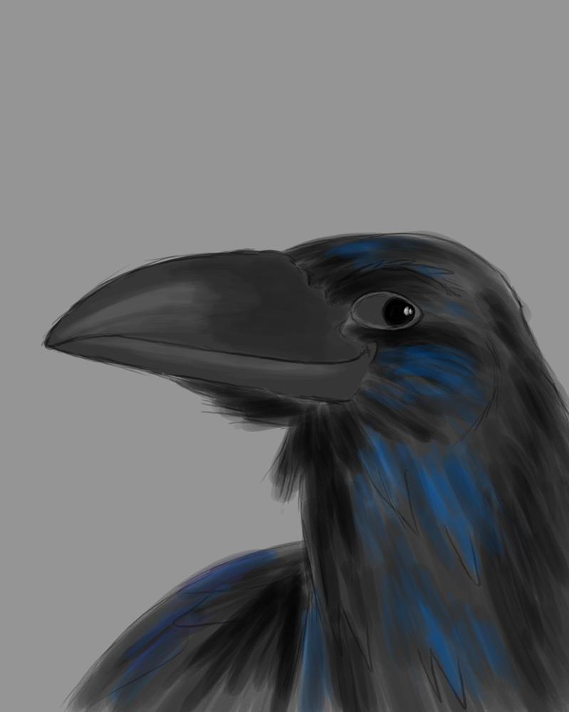 Raven Daily sketch #806 by GothicVampireFreak