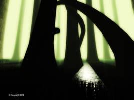 Lost Woods by OneginIII