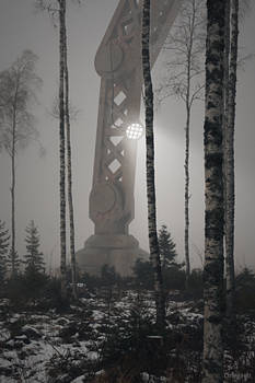 Robot in a Misty Forest
