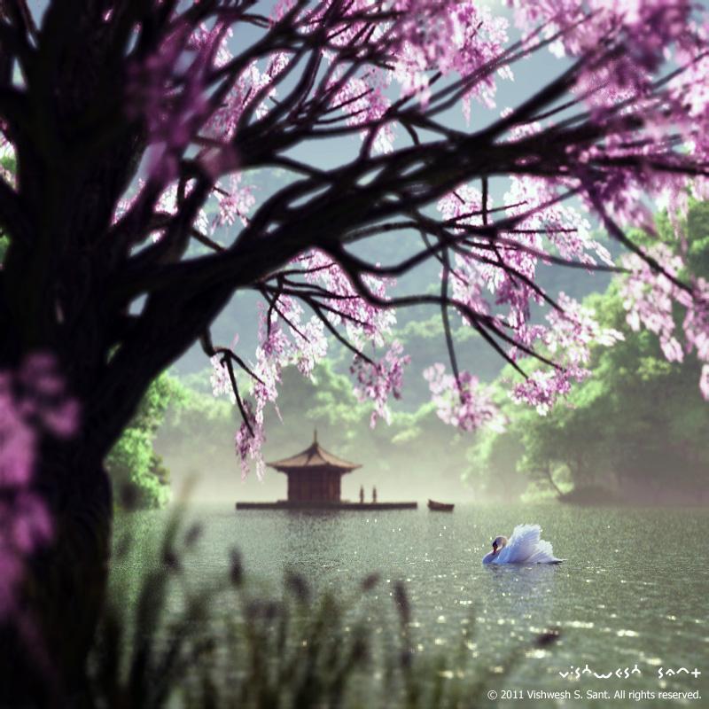 Swan by Vishw