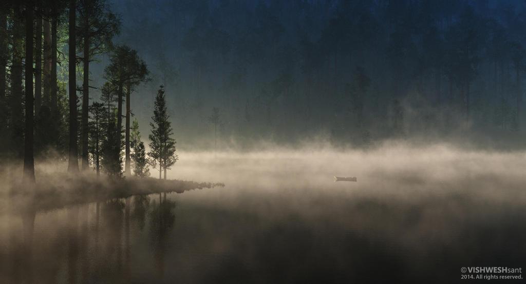 Forgotten by Vishw