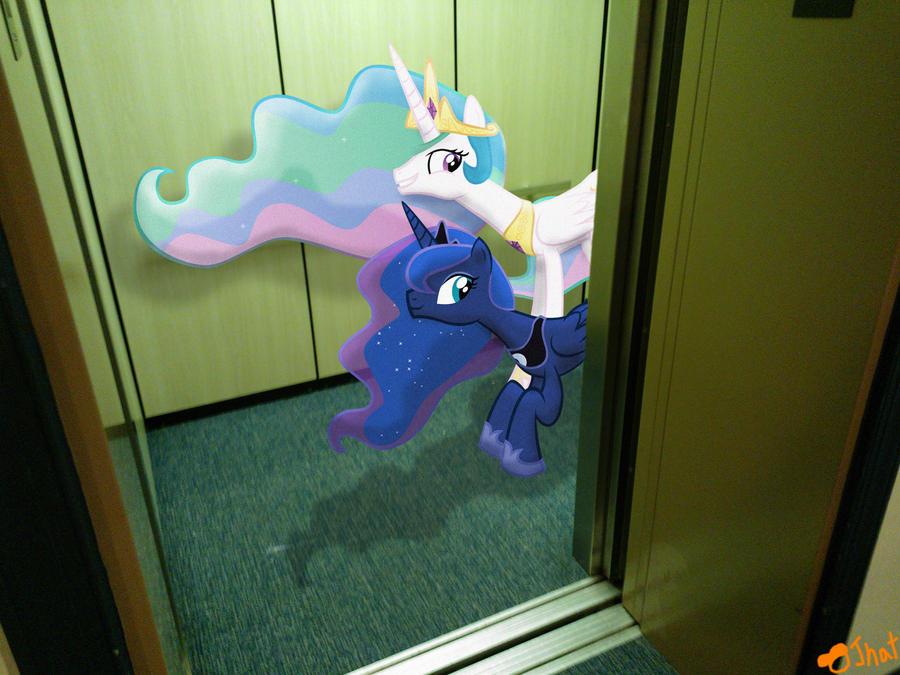 Warning! Trollestia in the Elevator! by OJhat