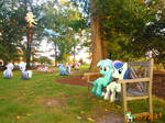 Out On The Grass, Up On The Bench (200 mark) by OJhat