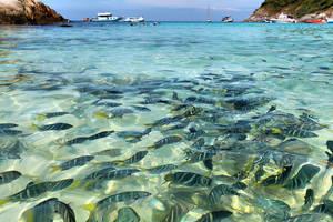 Phuket Dream by seyahatname