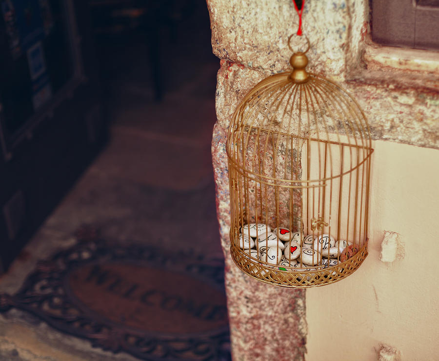 Hearts in Cage by seyahatname