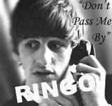 Tribute 4- Ringo by RizzotheRat1131