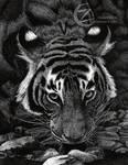 Tiger Dots- Pointillism by razorsfire
