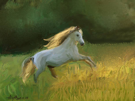 White Horse Study