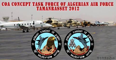 Tamarasset task force concept