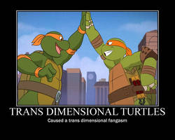 Trans dimensional turtles motivational